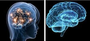 медитация влияет на мозг